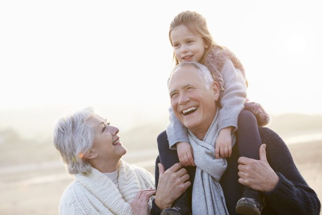 the rights of grandparents to have access to their grandchildren and custody applications